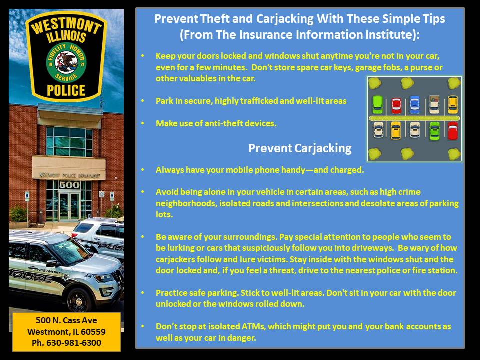 prevent theft and carjacking