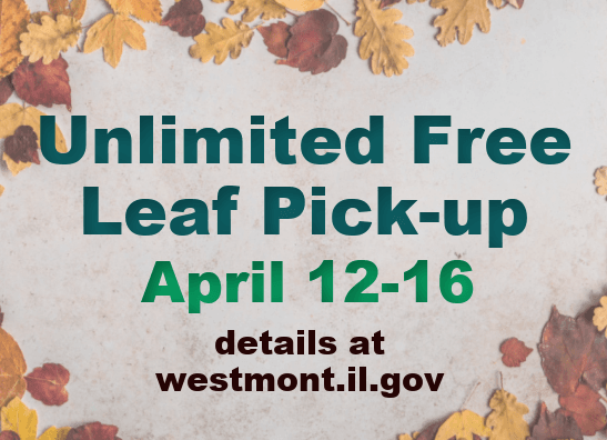 Free Leaf pick up