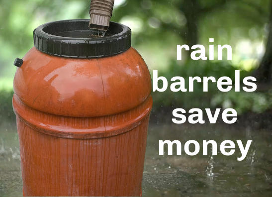 Rain Barrel still